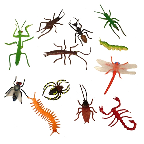 Bug Toys For Boys : Insect toys bing images